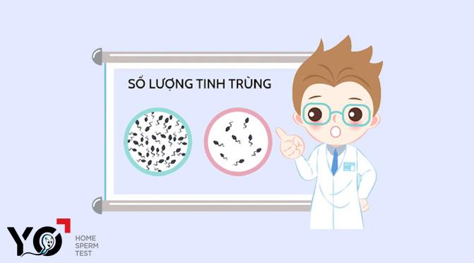 Bơm tinh trùng IUI là giải pháp tuyệt vời cho người tinh trùng loãng